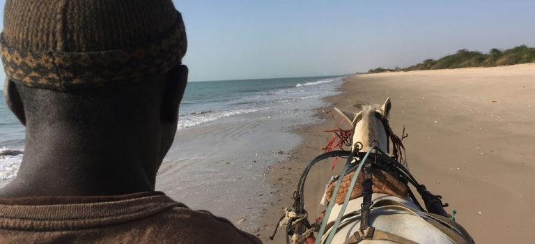 Vinterferie i Senegal